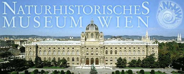 Gratis ins Naturhistorische Museum in Wien am 28.11.2014 - mit Los der Österreichischen Lotterien - 10 € sparen