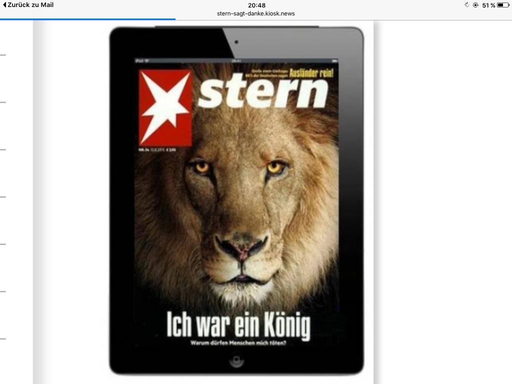 Stern E-Paper 12 Monate für nur 0,76€