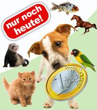 Nur noch heute: 5 Artikel für sein Haustier für 1,90€ bei Zooplus