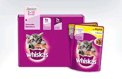 Gratis Katzenbabybox
