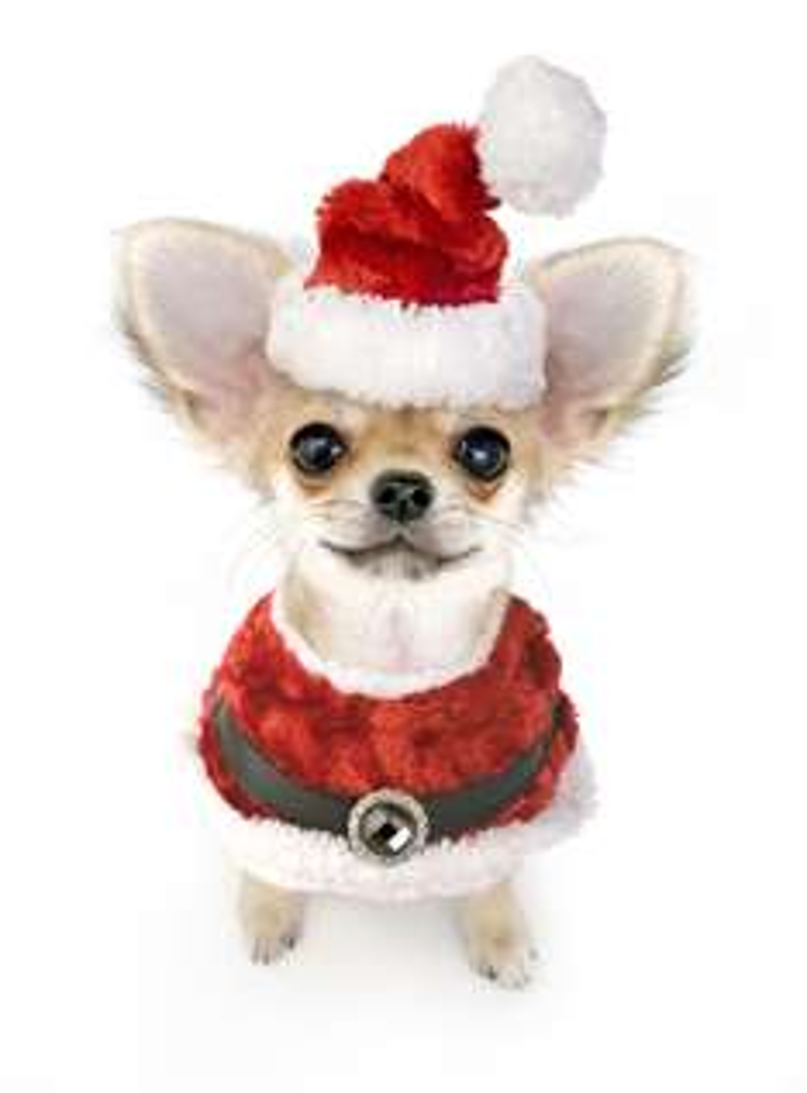 Frohe Weihnachten euch allen!!!