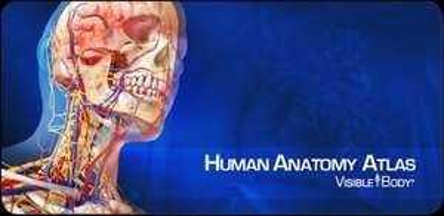 Human Anatomy Atlas iOS für 0,99€ bzw. Android für 1,08€
