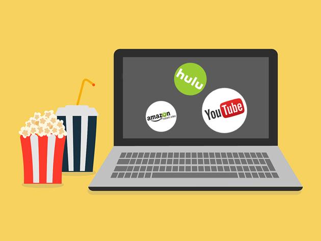 StreamJack TV SmartDNS: Lifetime Subscription (96% Rabatt)