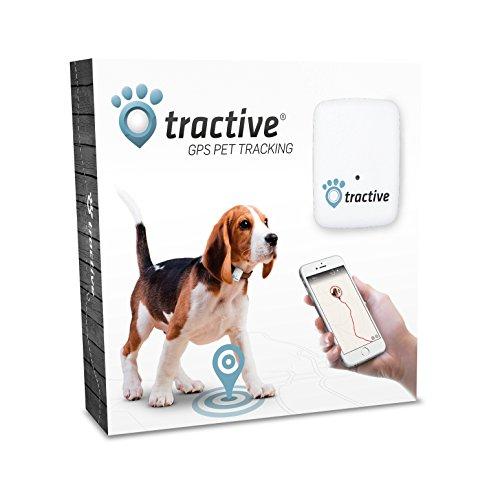 Tractive GPS Tracker (für Hunde und Katzen) um 42 € - 19% sparen