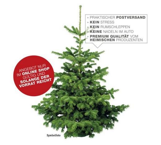 Weihnachtsbaum nach Hause bestellen! Einfach, Bequem, Sicher