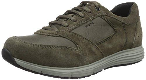 Amazon Geox Herren Uomo Dynamic D Sneakers Gr. 43 für 29,99 Euro