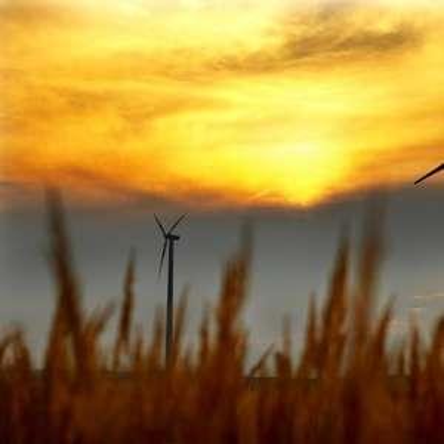 oekostrom: 6 Gratis Energie Monate