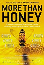 3Sat Mediathek: More than Honey - Bitterer Honig (Doku), gratis ansehen