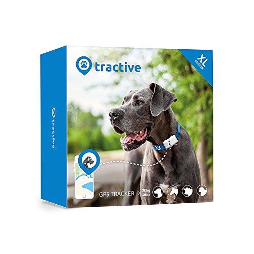 TRACTIVE Hunde GPS zum bisherigen Bestpreis im Angebot