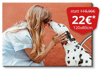 Leindwand 120x80cm für 22€  (+9,90 VSK nach Österreich)