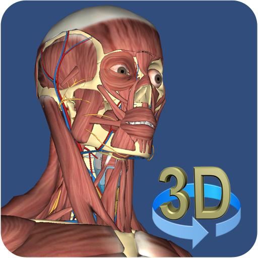 3D Anatomy (iOS) kostenlos