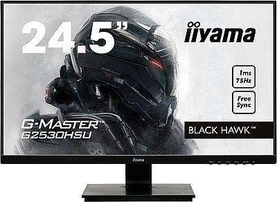"Iiyama G-Master Black Hawk 24,5"" Gaming Monitor"