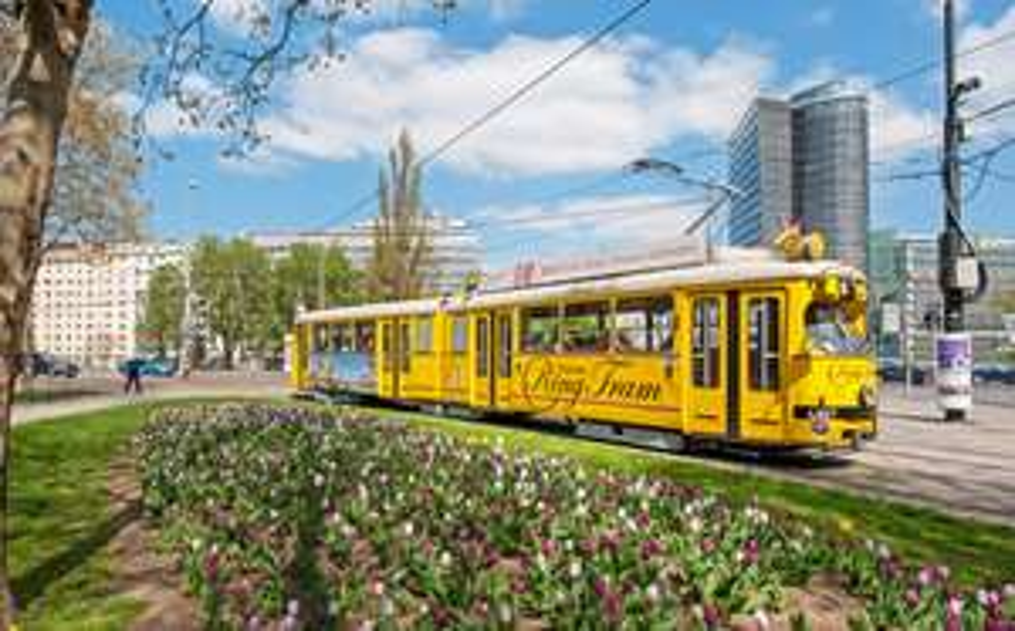 """-20% auf Tickets der """"Vienna Ring Tram"""""""