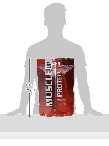 2kg Activlab, Muscle Up Protein, Waldfrüchte, 1er Pack (1x 2000g)