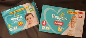 Pampers Windeln, Pants und P Prot. + Payback 24fach bei DM