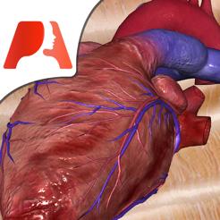 (iOS) Pocket Heart