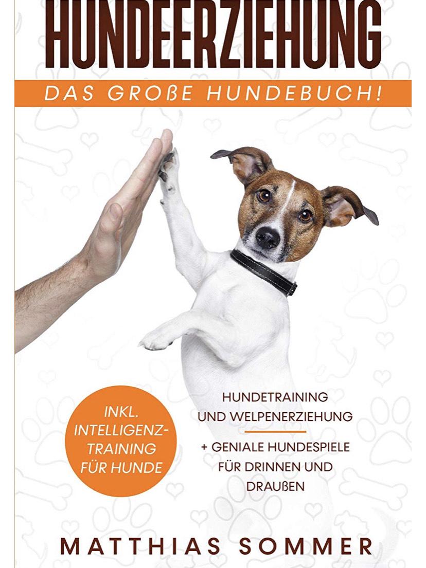 HUNDEERZIEHUNG - Das große Hundebuch: Hundetraining und Welpenerziehung inkl. Intelligenztraining für Hunde + geniale Hundespiele