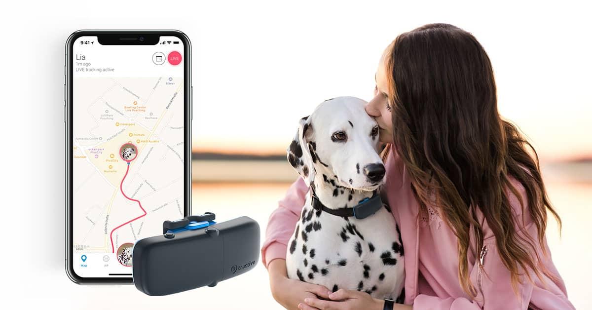 Tractive Tier-GPS Tracker 1+1 Gratis für Katzen und Hunde