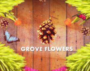Grove Flowers (PC) gratis auf itch.io