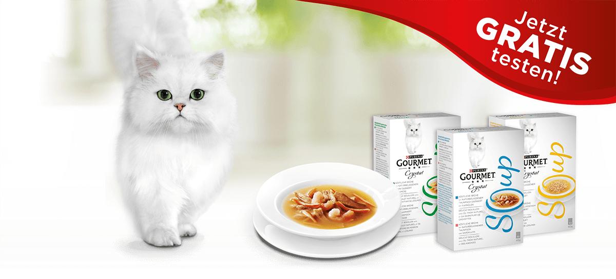 GRATIS Suppe für die Gadse [Purina Gourmet]