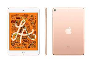 Apple iPad mini 5 (256 GB, gold)