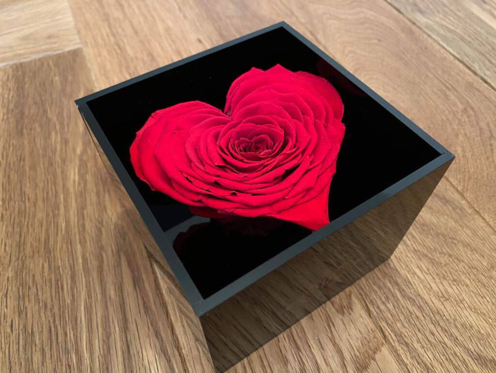 Black Friday Special - 25% Rabatt auf Infinity Rosen (halten 3 Jahre!)