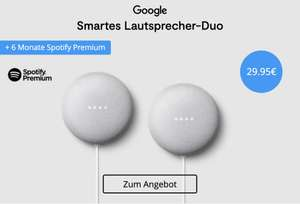 2x Google Nest Mini + 6 Monate Spotify Premium dazu
