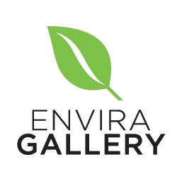 [Wordpress] Envira Gallery Lifetime