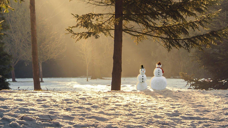 Charles Dickens: Eine Weihnachtsgeschichte - gratis Hörspiel