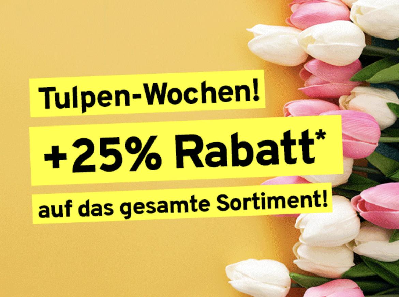 Vorteilshop: 25% Rabatt auf alles ab 25€ Bestellwert + gratis Versand