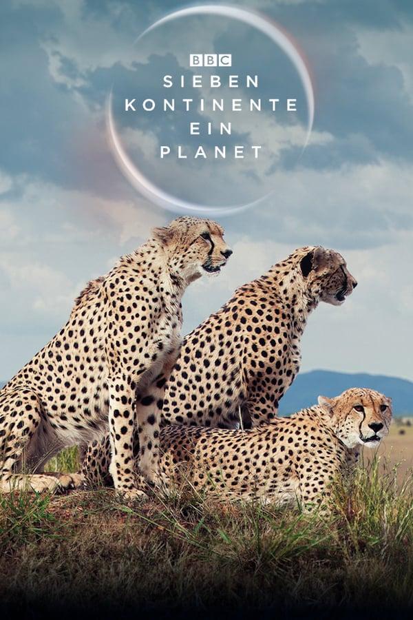 Sieben Kontinente - Ein Planet (2019) [IMDB 9,4]