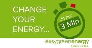 1 Jahr Gratis-Strom bei easy green energy für schnelle Abschlüsse