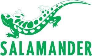 20% auf reduzierte Schuhe bei Salamander ab 49,95€ MBW