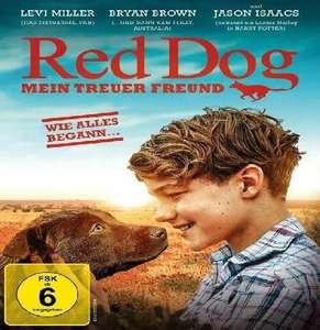 """Film: """"Red Dog – Mein treuer Freund"""" die Vorgeschichte des berühmten Hundes - humorvoller und einfühlsamer Famillienfilm, als Stream vom SRF"""