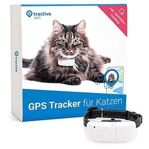 GPS Tracking für Katzen