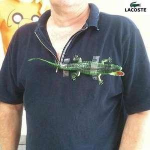 Lacoste Slim Fit Poloshirts, verschiedene Farben und Größen