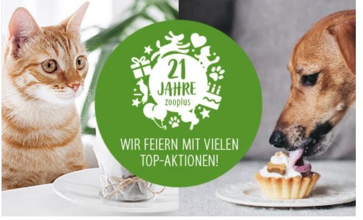 15% bei Zooplus auf Futter und Snacks