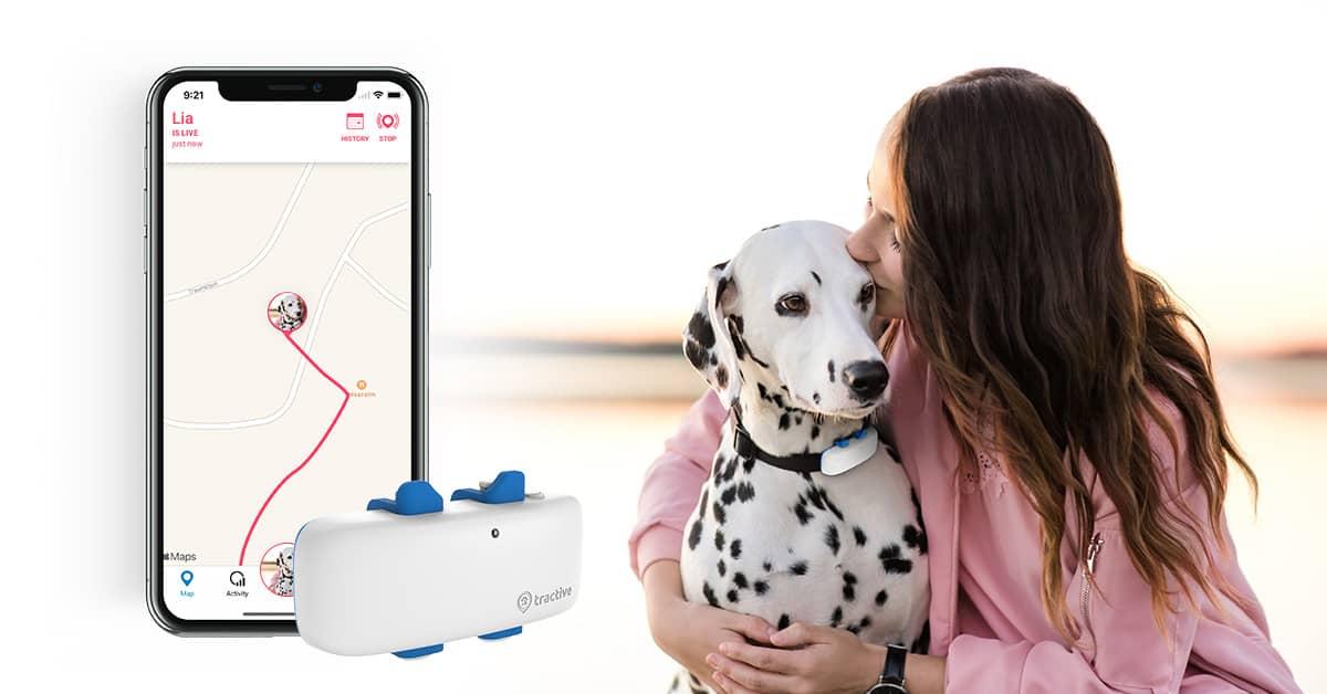 GPS für Hund und Katz / 25% auf den gesamten Einkauf inkl. Zubehör