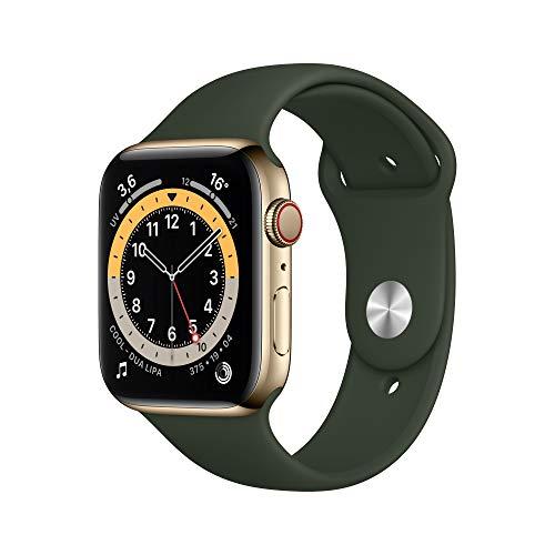 Apple Watch Series 6 (GPS + Cellular) 44mm Edelstahl gold mit Sportarmband zyperngrün