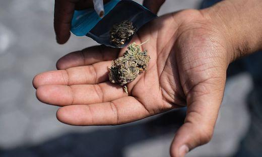 (Grazer Stadtpark) GRATIS Cannabis / CBD Verteilung